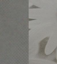 デジタル印刷(ピンクマスター100線出力)